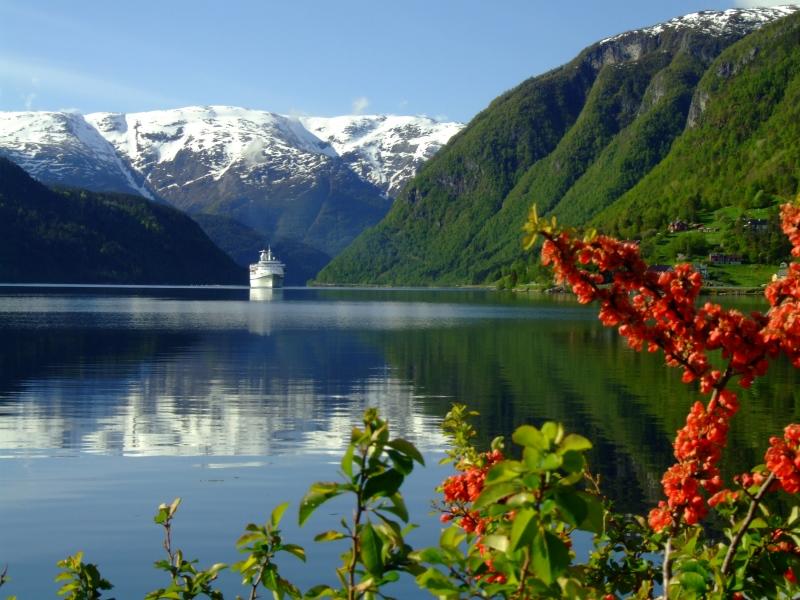 Ulvikfjord mit Kreuzfahrtschiff von der Promenade aus